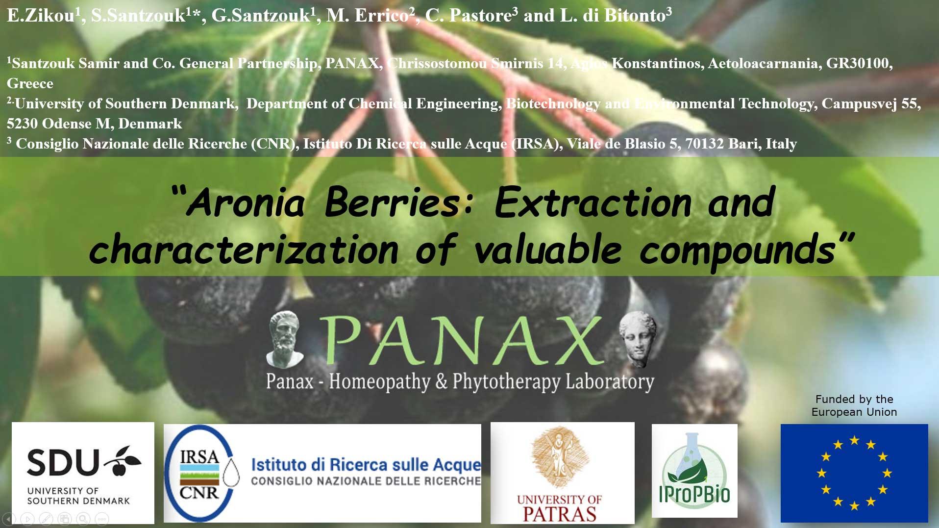 Aronia-berries---panax