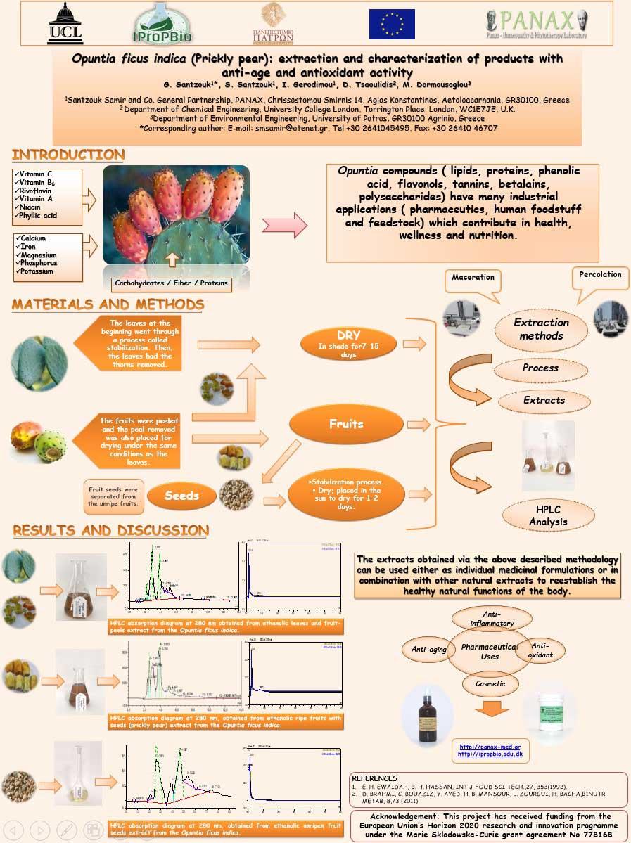 opuntia-ficus-indica21